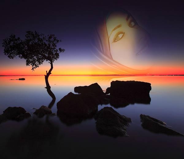 نادين محمد