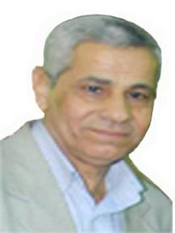 عمرو الجوجرى